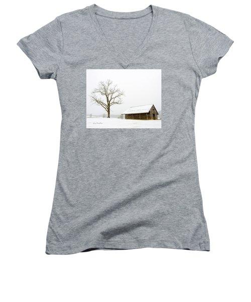 Winter Storm On The Farm Women's V-Neck T-Shirt