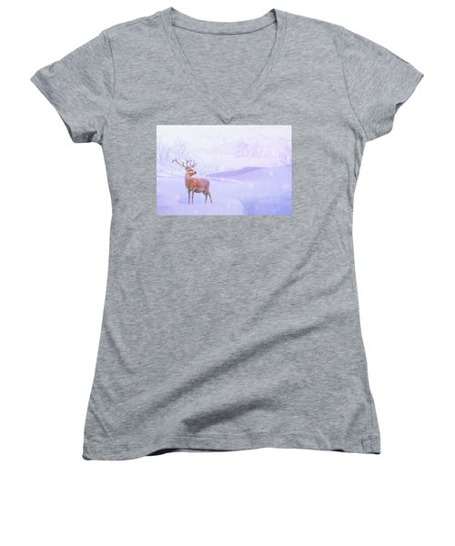 Winter Story Women's V-Neck T-Shirt