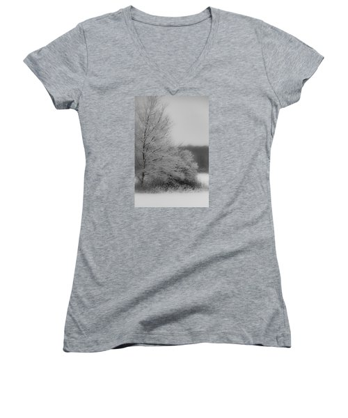 Winter Tree Women's V-Neck