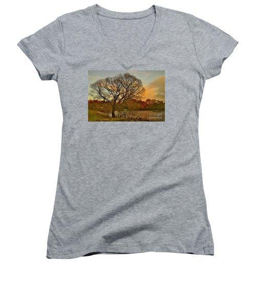 Winter Tree On The River Tweed Women's V-Neck