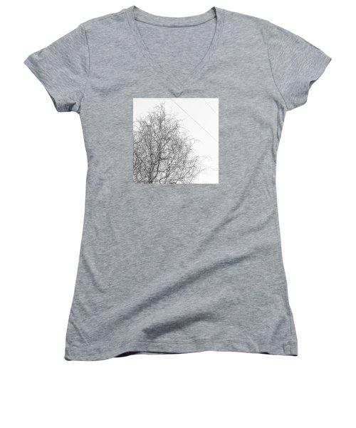 Winter Trees Women's V-Neck (Athletic Fit)