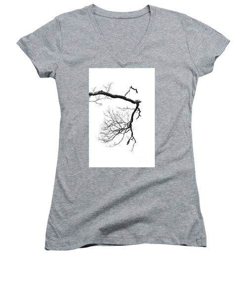 Women's V-Neck T-Shirt (Junior Cut) featuring the photograph Wintered Over by Skip Willits