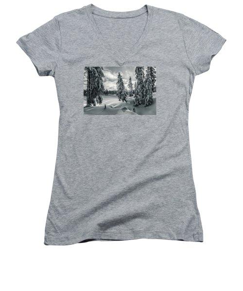 Winter Wonderland Harz In Monochrome Women's V-Neck T-Shirt