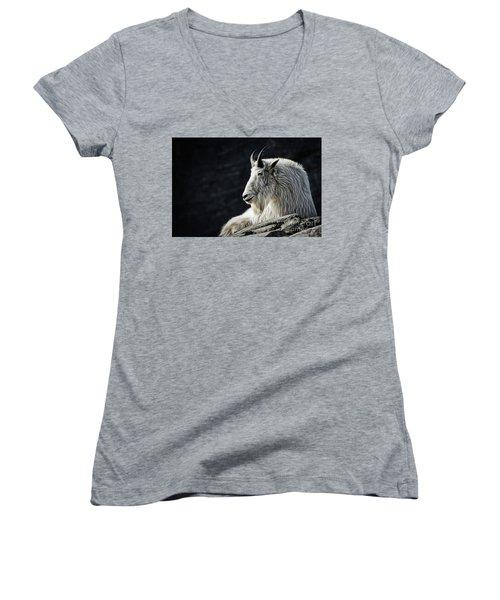 Wisdom From Up High Women's V-Neck T-Shirt (Junior Cut) by Brad Allen Fine Art