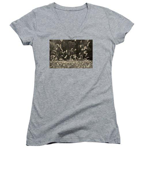 Wispy Women's V-Neck T-Shirt (Junior Cut) by Joanne Coyle