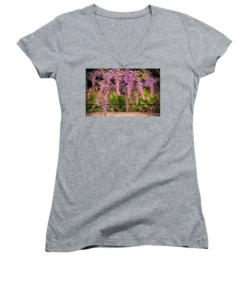 Wisteria Blooming Women's V-Neck (Athletic Fit)