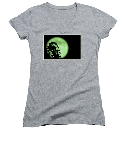 Women's V-Neck T-Shirt (Junior Cut) featuring the photograph Witching Hour by DigiArt Diaries by Vicky B Fuller