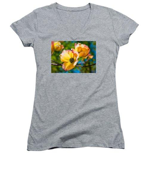 Within Women's V-Neck T-Shirt (Junior Cut) by Craig Szymanski
