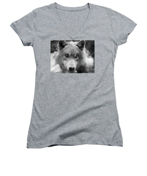 Wolf 1 Women's V-Neck (Athletic Fit)