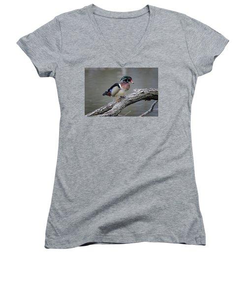 Wood Duck Drake Women's V-Neck T-Shirt (Junior Cut) by Gary Hall