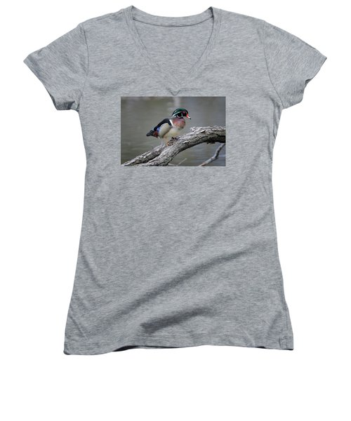 Wood Duck Drake Women's V-Neck T-Shirt