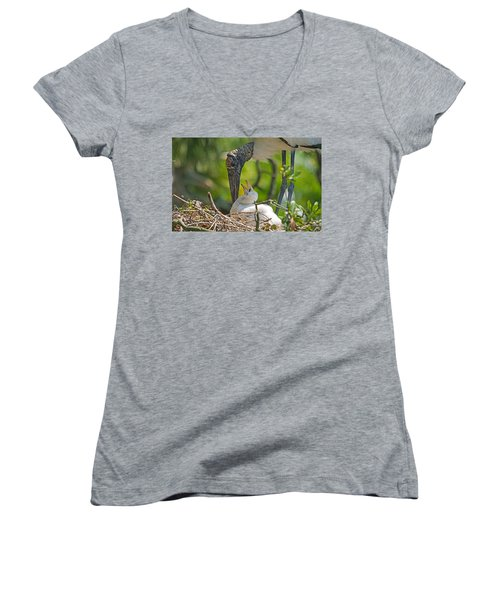 Wood Stork Chick And Mom Women's V-Neck T-Shirt (Junior Cut) by Kenneth Albin