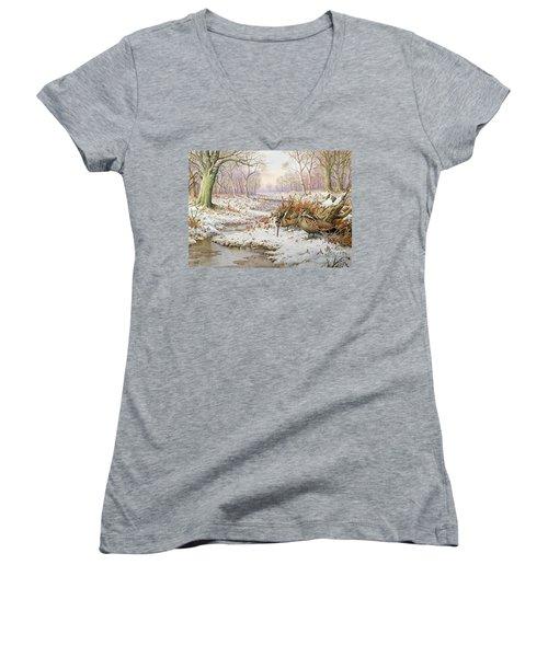 Woodcock Women's V-Neck T-Shirt