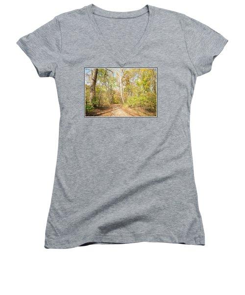 Woodland Path, Autumn, Montgomery County, Pennsylvania Women's V-Neck T-Shirt (Junior Cut) by A Gurmankin