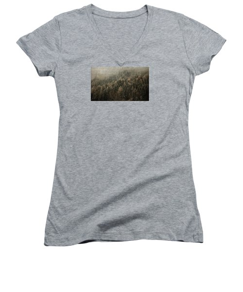 Woods In Winter Women's V-Neck (Athletic Fit)