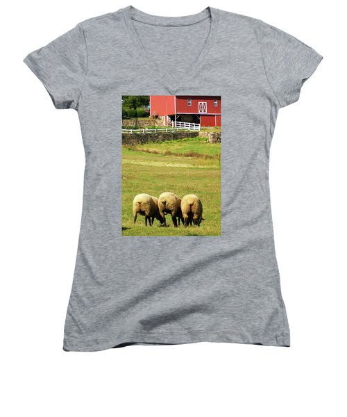 Wooly Bully Women's V-Neck T-Shirt