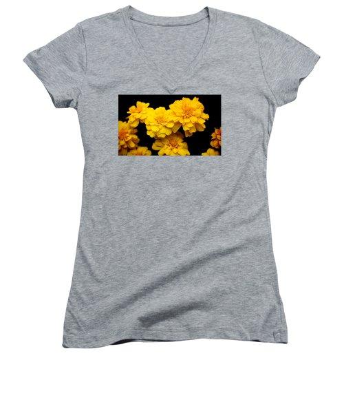 World In Yellow Women's V-Neck