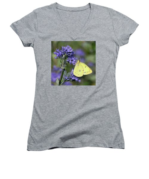 Yellow And Indigo Women's V-Neck (Athletic Fit)