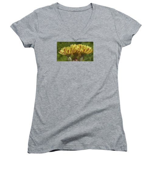 Yellow And Red Cactus Flowers Women's V-Neck T-Shirt