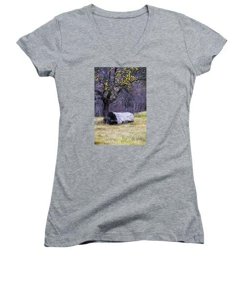 Yellow Apples Women's V-Neck T-Shirt (Junior Cut) by Tom Singleton