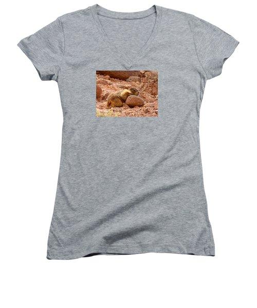 Yellow Bellied Marmot Capitol Reef Utah Women's V-Neck T-Shirt (Junior Cut) by Deborah Moen