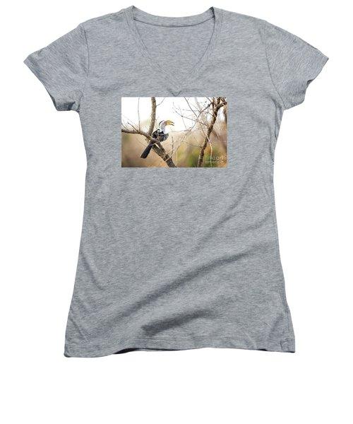 Yellow-billed Hornbill Sitting In A Tree.  Women's V-Neck T-Shirt (Junior Cut) by Jane Rix
