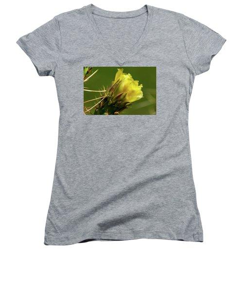 Yellow Cactus Flower Women's V-Neck