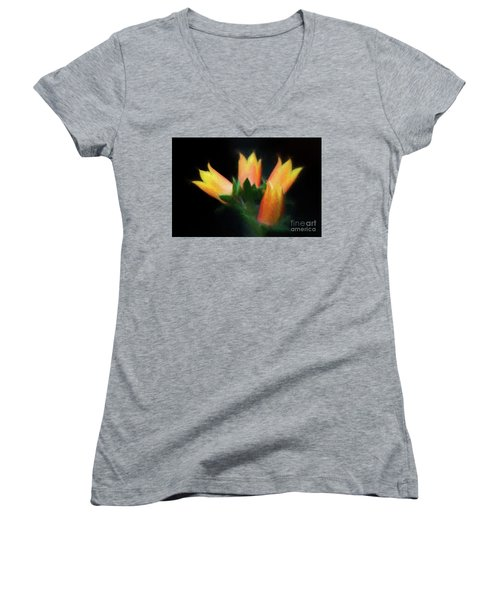 Women's V-Neck T-Shirt (Junior Cut) featuring the photograph Yellow Cactus Flowers by Darleen Stry
