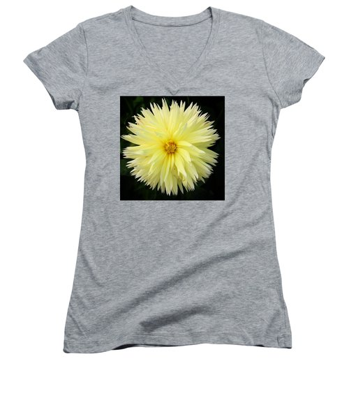 Yellow Dahlia Women's V-Neck
