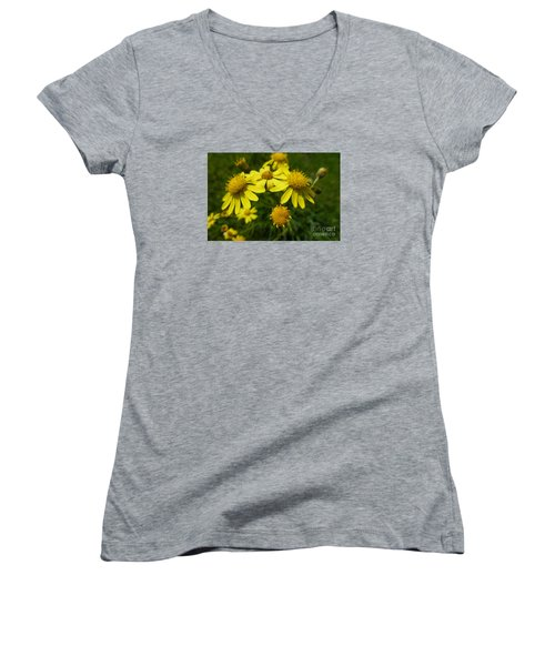 Yellow Daisies 2 Women's V-Neck