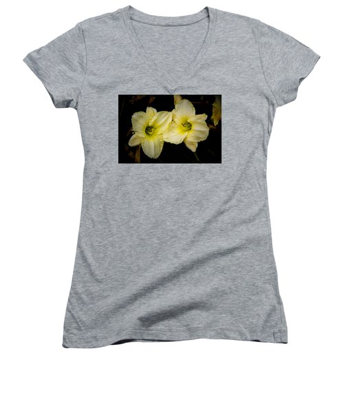 Yellow Day Lilies Women's V-Neck