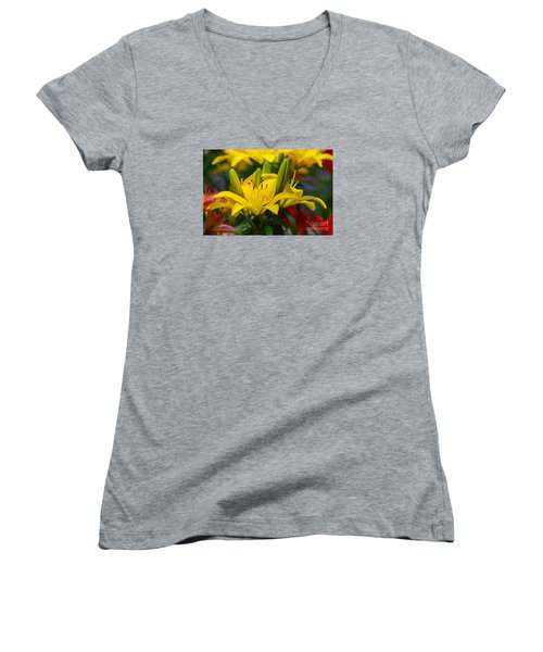 Yellow Day Lily 20120614_55a Women's V-Neck T-Shirt (Junior Cut) by Tina Hopkins