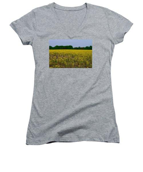 Yellow Field Women's V-Neck T-Shirt