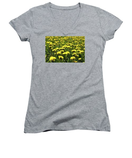 Yellow Field Two  Women's V-Neck T-Shirt (Junior Cut) by Lyle Crump