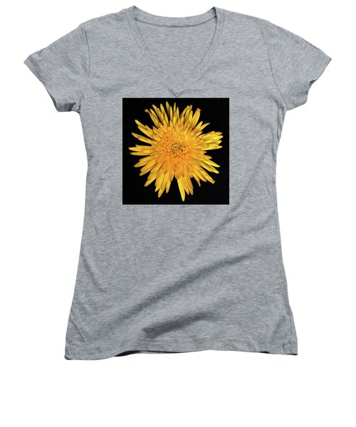 Yellow Flower Macro Women's V-Neck