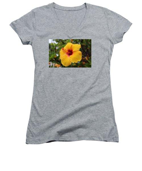Yellow Hibiscus Women's V-Neck