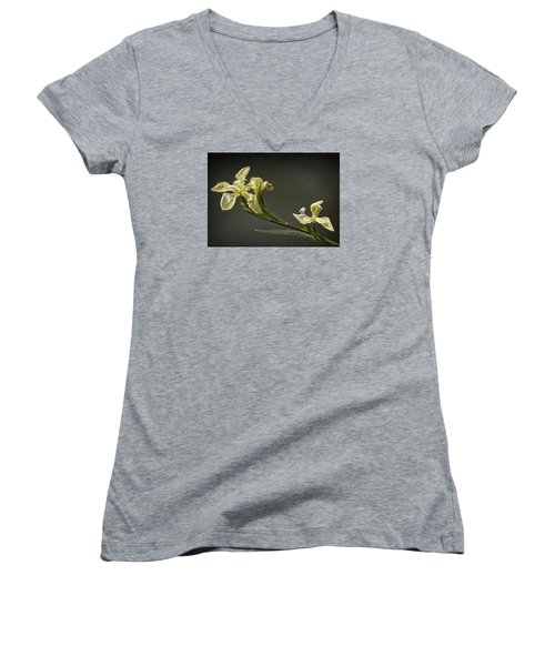 Women's V-Neck T-Shirt (Junior Cut) featuring the photograph Yellow Iris by Shirley Mitchell