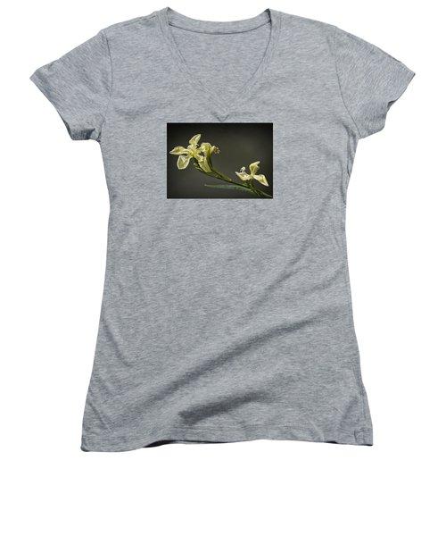 Yellow Iris Women's V-Neck T-Shirt