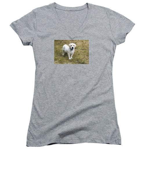 Yellow Labrador Puppy At Wanting To Play. Women's V-Neck