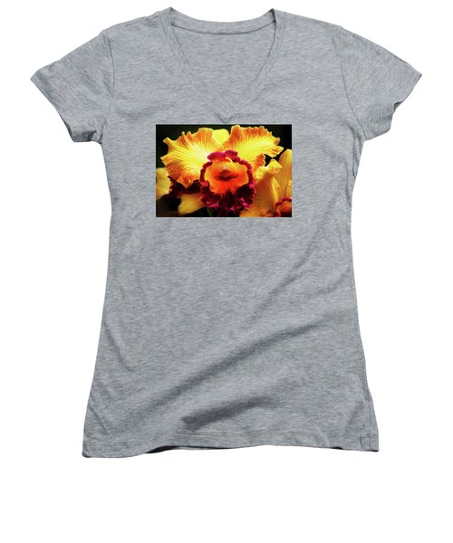 Women's V-Neck T-Shirt (Junior Cut) featuring the photograph Yellow-purple Orchid by Anthony Jones