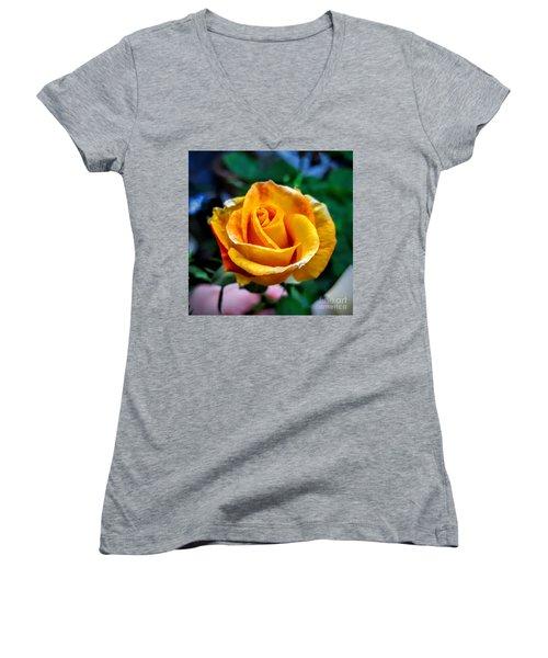 Yellow Rose Women's V-Neck T-Shirt (Junior Cut) by Garnett Jaeger