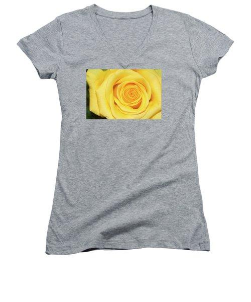 Yellow Rose Women's V-Neck T-Shirt (Junior Cut) by Nance Larson