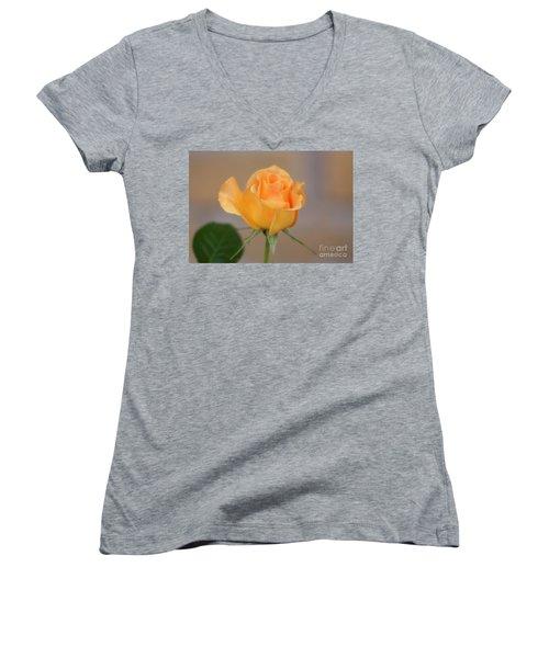 Yellow Rose Of Texas Women's V-Neck T-Shirt (Junior Cut) by Joan Bertucci