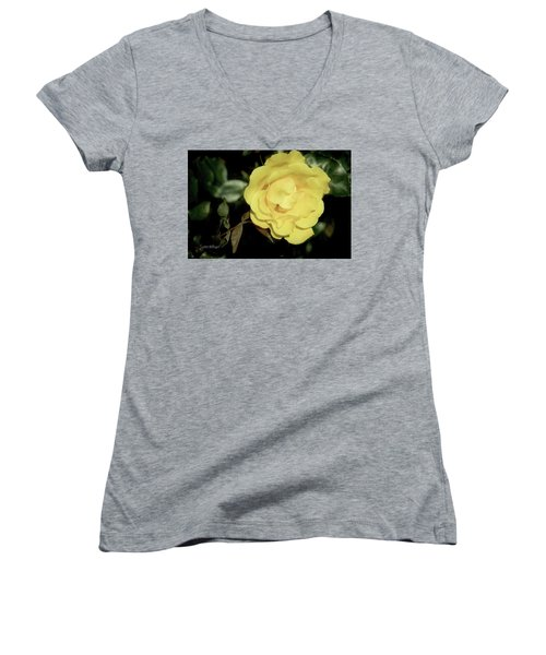 Yellow Rose Women's V-Neck (Athletic Fit)