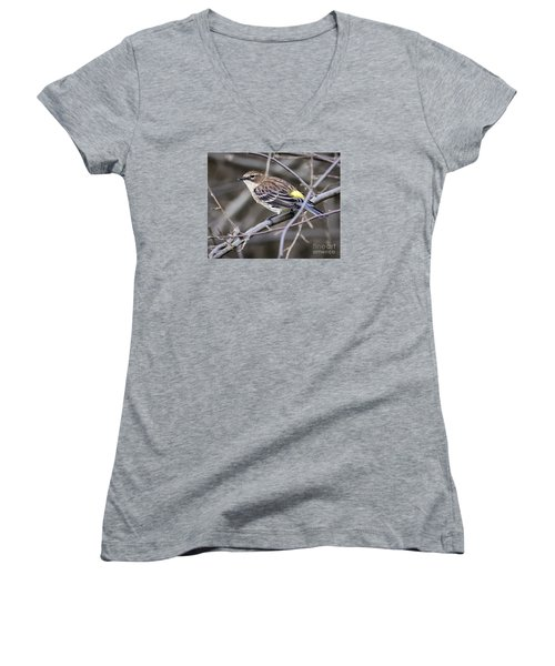Women's V-Neck T-Shirt (Junior Cut) featuring the photograph Yellow-rumped Warber In Fall Colors by Ricky L Jones