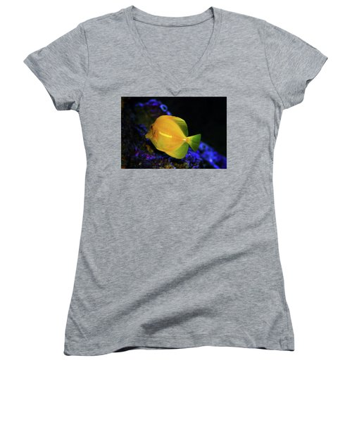 Women's V-Neck T-Shirt (Junior Cut) featuring the photograph Yellow Tang by Anthony Jones