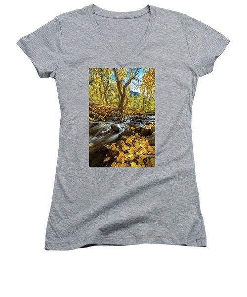 Yellow Women's V-Neck T-Shirt