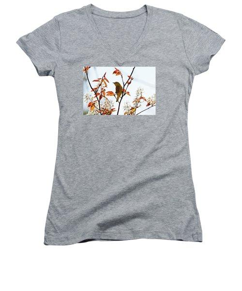 Yellow Warbler Women's V-Neck T-Shirt (Junior Cut) by Debbie Oppermann
