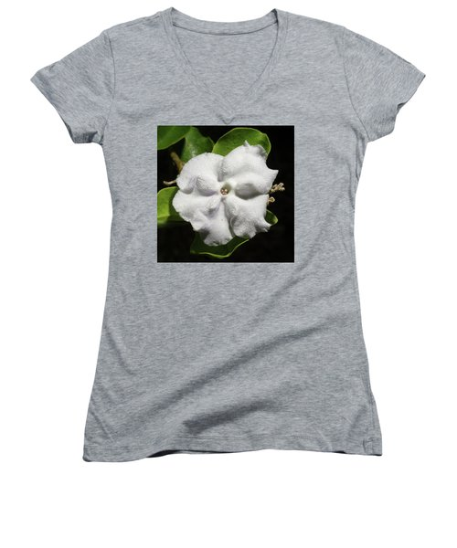 Women's V-Neck T-Shirt (Junior Cut) featuring the photograph Yesterday, Today And Tomorrow by Richard Rizzo