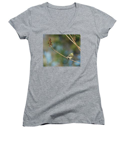 You Lookin' At Me? Women's V-Neck T-Shirt